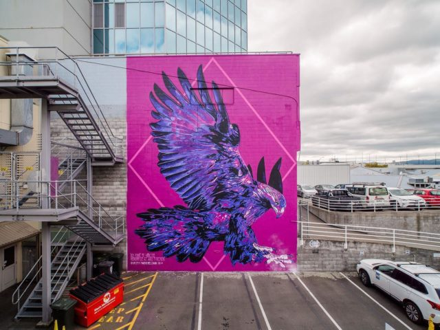 Charles and Janine Williams - Tāmaki Makaurau / Aotearoa 🇳🇿 @charles_phat1tmd @janine_divatmd . Final Mural for Street Prints Papaioea 🙌🏽 Located in Jersey Laneway, Palmerston North . Charles & Janine share a timely korero regarding their Art . 'Ka huhū te Hōkio, rorowhio ai aku taringa - the Hōkio whirrs', my ears whirr!' ~ Papa Manu (Kaumatua, Rangitāne Iwi) The majestic & now extinct Hōkioi (Haast Eagle) was carried by the uplift of the breeze from the sea up to the hills as it flew high above the valleys of Papaioea looking down for prey. The flapping of the wings created a whirr (the huuu huuu sound) & if that connected with your hearing (the rorowhio in your ears) it was a reminder that you were prey to its grasp & needed to keep a sharper eye on your actions in life.  It is a reminder for us all to have our ears tuned to the cry of the land & the people - to the efforts of strengthening the presence of mana whenua in the regions they whakapapa & connect to. Our solarised style reminds us that although it is extinct in the natural, the supernatural realm of its presence is with us always! Thank you to mana whenua, to Street Prints NZ/AU for having us in Papaioea (Palmerston North) & to everyone who put together such a great week. #birdgang #soularised #streetprints #streetprintspapaioea #charlesjaninewilliams . 📸 by @yoshi_travel_ . #bird #birds #nativebirds #maori #maoriartist #indigenous #indigenousart #indigenousartist