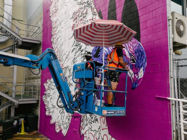 Charles and Janine Williams - Tāmaki Makaurau / Aotearoa 🇳🇿 @charles_phat1tmd @janine_divatmd . Painting their Mural for Street Prints Papaioea 2020 - International Street Art Festival Palmerston North 💪🏽 . Charles & Janine share a timely korero regarding their Art . 'Ka huhū te Hōkio, rorowhio ai aku taringa - the Hōkio whirrs', my ears whirr!' ~ Papa Manu (Kaumatua, Rangitāne Iwi) The majestic & now extinct Hōkioi (Haast Eagle) was carried by the uplift of the breeze from the sea up to the hills as it flew high above the valleys of Papaioea looking down for prey. The flapping of the wings created a whirr (the huuu huuu sound) & if that connected with your hearing (the rorowhio in your ears) it was a reminder that you were prey to its grasp & needed to keep a sharper eye on your actions in life.  It is a reminder for us all to have our ears tuned to the cry of the land & the people - to the efforts of strengthening the presence of mana whenua in the regions they whakapapa & connect to. Our solarised style reminds us that although it is extinct in the natural, the supernatural realm of its presence is with us always! Thank you to mana whenua, to Street Prints NZ/AU for having us in Papaioea (Palmerston North) & to everyone who put together such a great week. #birdgang #soularised #streetprints #streetprintspapaioea #charlesjaninewilliams . 📸 by @yoshi_travel_ . #bird #birds #nativebirds #maori #maoriartist #indigenous #indigenousart #indigenousartist